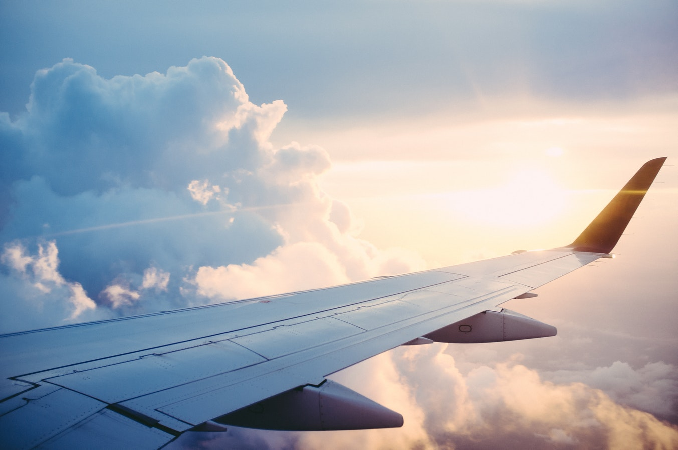 fly-economy